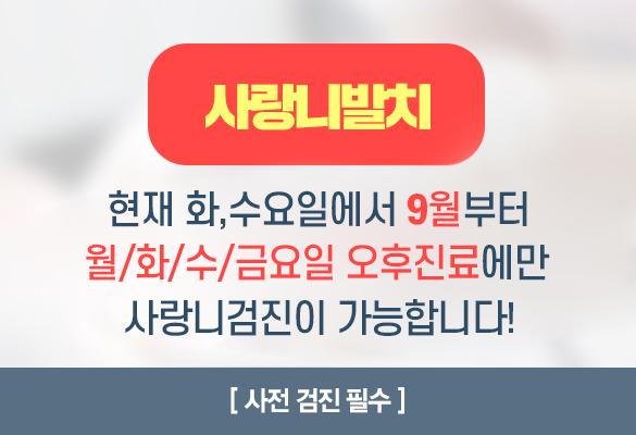 서울샤치과_사랑니_팝업.jpg